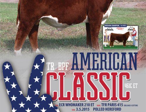 TR BPF American Classic – ORDER SEMEN TODAY!