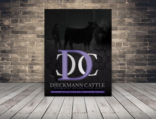 2019 Dieckmann Cattle Production Sale Catalog