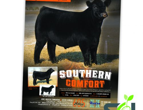 Schrag 605 Southern Comfort ad