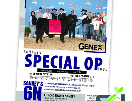 Sankey's 6N Ranch Houston ad